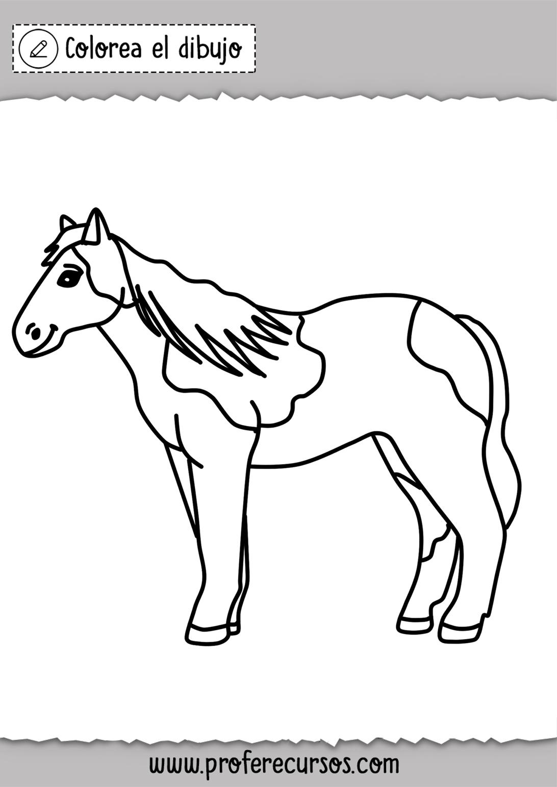 Dibujo caballo para colorear