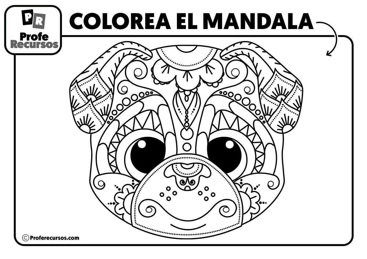 Dibujos de mandalas de animales para niños