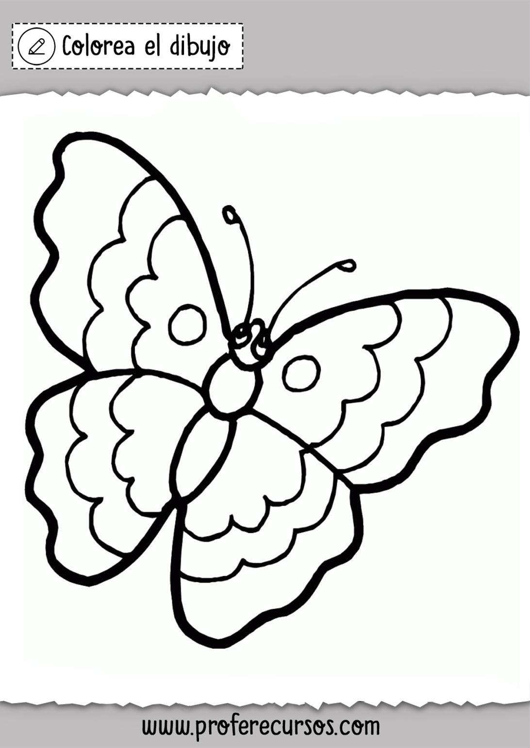 Mariposas Colorear