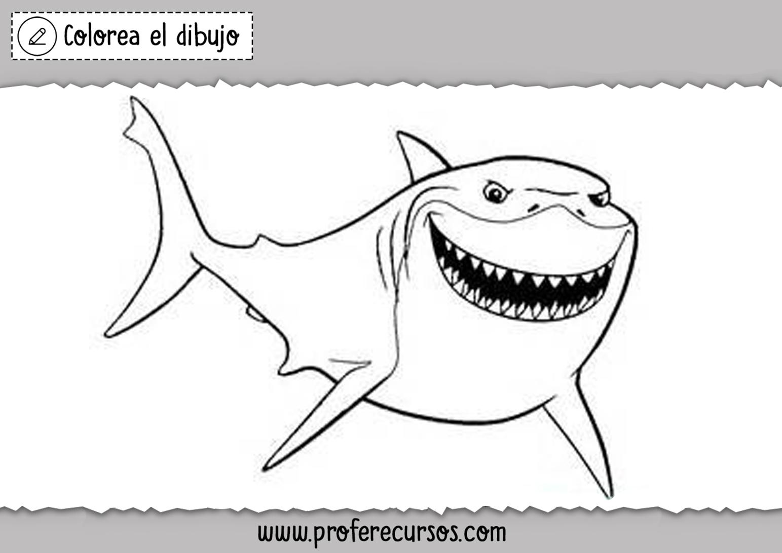 Tiburon para Colorear y Pintar