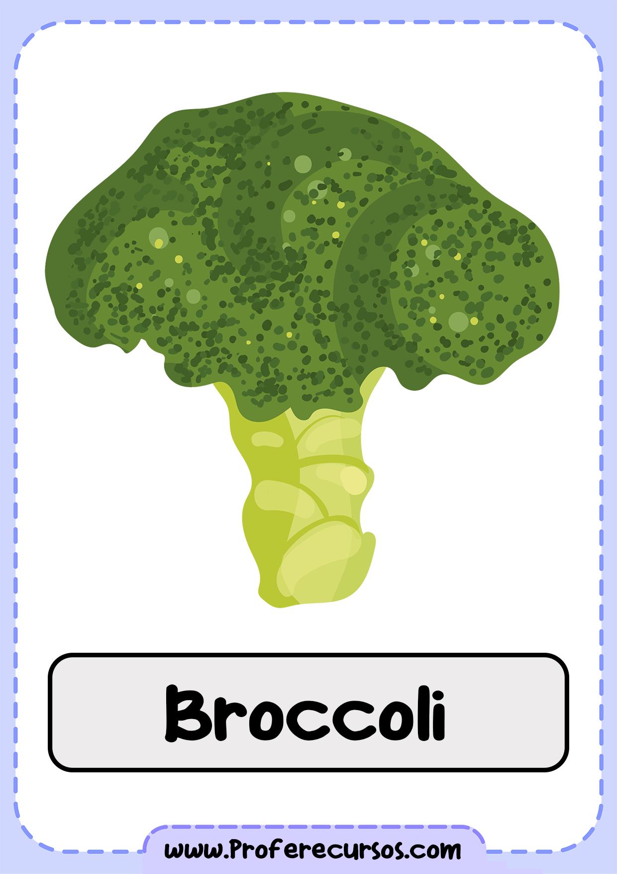 Vegetables-Vocabulary-Broccoli