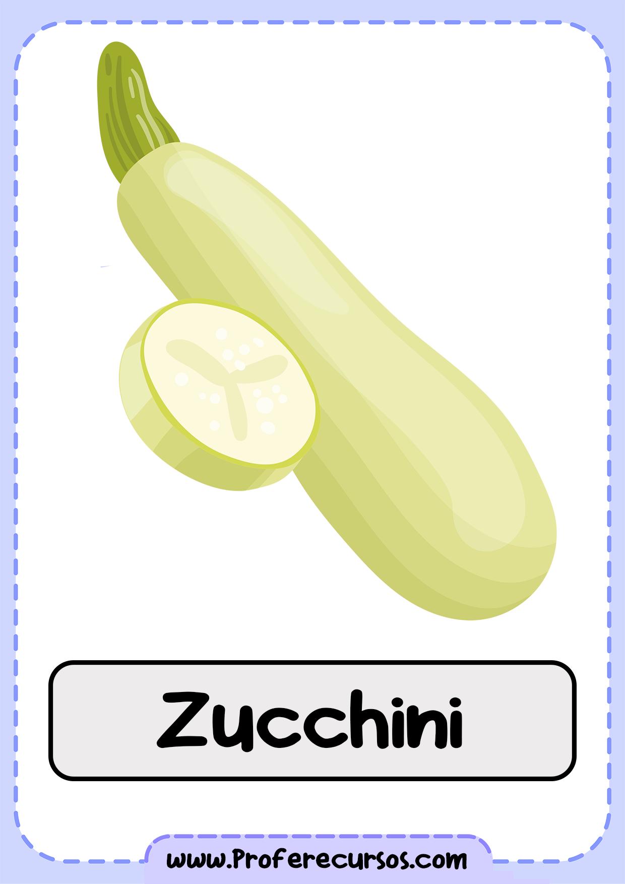 Vegetables-Vocabulary-Zucchini